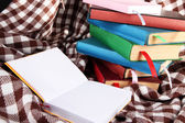 Many books with bookmarks on plaid — Stok fotoğraf