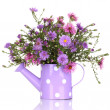Beautiful bouquet of purple flowers in watering can isolated on white — Stock Photo #23001422