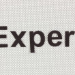 Foto de Stock  : Word Expert on silvery background