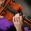 Beautiful young girl with violin on grey background — Stok fotoğraf