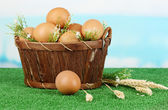 Eggs in basket on grass on blue natural background — Stock Photo