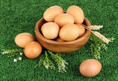Eggs in bowl on grass close-up — Stock Photo