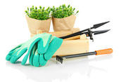 Garden tools isolated on white — Stock Photo