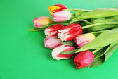 Beautiful tulips in bucket on green background — Stock Photo