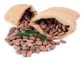 какао-бобы в мешках с листьями, изолированные на белом фоне — Стоковое фото