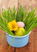 Oeufs de pâques dans un bol avec de l'herbe sur une table en bois de près — Photo
