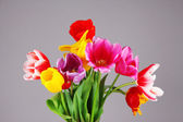 Beautiful tulips in bouquet on gray background — Stock Photo