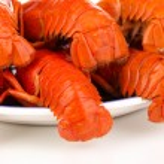 Tasty crayfishes on plate isolated on white — Stock Photo