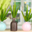 Cactuses in vases on windowsill — Stock Photo #23110300