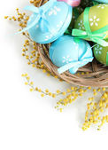 Easter eggs in basket and mimosa flowers, isolated on white — Stockfoto