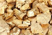 Golden nuggets close-up — Stock Photo