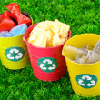 Stock Photo: Recycling bins on green grass