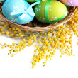 Easter eggs in basket and mimosa flowers, isolated on white - Foto de Stock