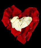 Beautiful heart of red and white rose petals isolated on black — Stock Photo