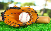 Baseball glove, bat and ball on grass in park — Stock Photo