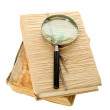 Stock Photo: Magnifying glass and book isolated on white