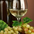 Composition of wine bottles, glass of white wine, grape on color background — Stock Photo #23193386
