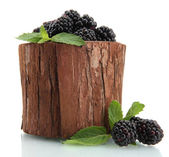 Beautiful blackberries with leaves in wooden vase isolated on white — Stock Photo
