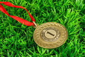 Gold medal on grass background — Stock Photo