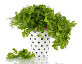 Colorful pot with parsley and dill isolated on white — Stock Photo