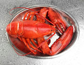 Red lobster on tray, on grey background — Stock Photo