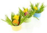 Easter eggs in bowls with grass on table isolated on white — Stock Photo