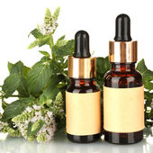 Essential oil and mint on white background close-up — Stock Photo