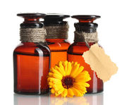 Medicine bottles and beautiful calendula flower, isolated on white — Stock Photo