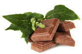Pieces of chocolate and mint isolated on white — Stock Photo