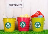 Pojemników do recyklingu na zielonej trawie w pobliżu ogrodzenia drewniane — Zdjęcie stockowe