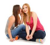 Twee meisje vrienden roddel geïsoleerd op wit — Stockfoto