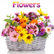 Beautiful bouquet of bright flowers in basket isolated on white — Stock Photo #23373842