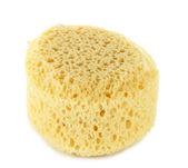 Sponges and sea sponge isolated on white — Stock Photo
