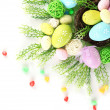 Composition for Easter isolated on white — Foto Stock