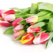Stock Photo: Beautiful tulips in bucket isolated on white