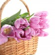 Beautiful bouquet of purple tulips in basket, isolated on white — Stock Photo #23525359