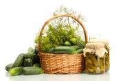 Fresh cucumbers, pickles and dill in basket isolated on white — Stock Photo