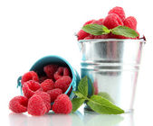 Beautiful raspberries in buckets isolated on white — Stock Photo