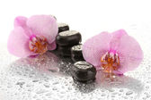 Spa stones and orchid flowers, on wet backgroun — Stock Photo