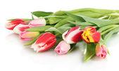 Beautiful tulips in bucket isolated on white — Stock Photo