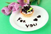 Zoete cake met blackberry en chocolade saus op plaat, op een achtergrond met kleur — Stockfoto