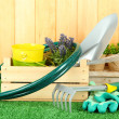 Royalty-Free Stock Photo: Garden tools on grass in yard