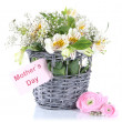 Bouquet of flowers in basket isolated on white - Stok fotoğraf