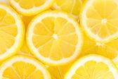 Lemon slices background — Stock Photo