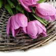 Beautiful bouquet of purple tulips, isolated on white — Foto de Stock
