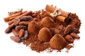 çikolata truffles, kakao ve baharat üzerine beyaz izole — Stok fotoğraf