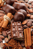 Composition of chocolate sweets, cocoa and spicese — Stock Photo