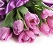 Beautiful bouquet of purple tulips on satin cloth, isolated on white — Stock Photo #23812663