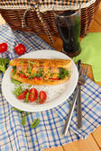 Delicious hot dog on plate at picnic close-up — Stock Photo