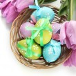 Bright easter eggs in basket and tulips, isolated on white — Stock Photo #23855963